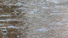 Quick rain, rain drops in puddle - stock footage