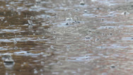 Stock Video Footage of Quick rain, rain drops in puddle