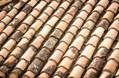 Roof tile with leaves and water in rows. Stock Photos