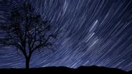 Stock Video Footage of 4k UHD night sky stars tree time lapse star trail 10941