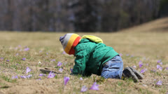 Courious baby on his knees searching and smelling a flower on a hill Stock Footage