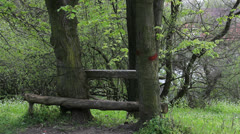 Rest on bench built with two trees Stock Footage