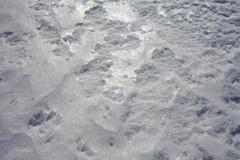 Snow surface full frame background texture pattern Stock Photos