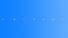 Pajaro Bosque Bird Jungle(loop) 1 Sound Effect