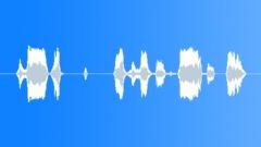 Metallic Gate Noise Sound Effect