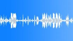 Dog Growl 03 Sound Effect