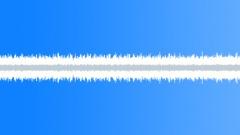 Rain in Hawaii 04 (Many birds) - sound effect
