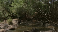 River pond with stream in Niassa Reserve, Mozambique. Stock Footage