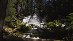 Wilderness and majestic waterfall Stock Footage