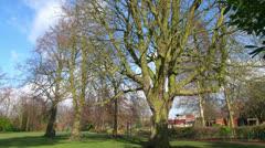 Loughborough Carillon - stock footage