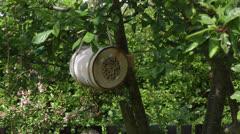 Bee Log home hanging in garden fruit tree Stock Footage