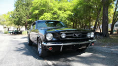 Parked mustang near trees, with dog Stock Footage