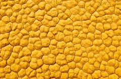 Texture of cracked soil, death valley, california Stock Photos