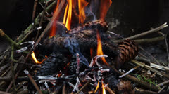 Burning coal and cones. Stock Footage