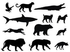 predators - stock illustration