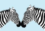 Stock Illustration of zebra
