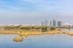 Cityscape with aquatic ecosystem Stock Photos