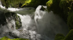 Stock Video Footage of Water rushes through mossy channel
