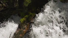 Waterfall cascades around log Stock Footage