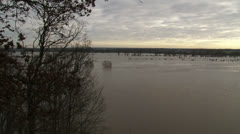 Panoramic view of inundated floodplains of river Rhine at Wageningen Stock Footage