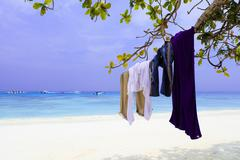 Clothes of tourism on tree branch Stock Photos