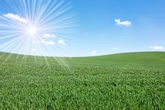 Stock Photo of sun over field