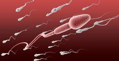 Sperm cell female against the flow Stock Illustration