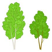 Trees deciduous - stock illustration