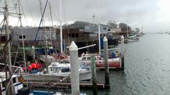 View of the boat docks at Morro Bay Harbor. California, USA. Stock Footage