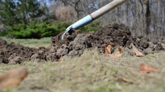 Gardener level rake tool molehill soil garden lawn meadow spring Stock Footage
