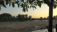 India Tamil Nadu Thanjavur leaves hang over wetland 5 Stock Footage