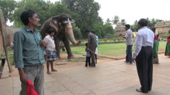 India Tamil Nadu Thanjavur temple boy reluctant before elephant blessing 10 Stock Footage