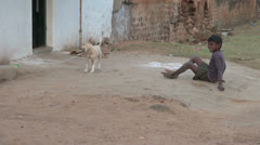 India Tamil Chettinad boy and tethered dog play 4 - stock footage