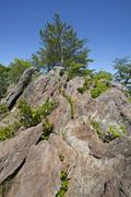 Stock Photo of kings mountain pinnacle