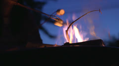 Roasting marshmallows at camp fire Stock Footage