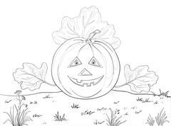 Pumpkin Jack O Lantern, contours Stock Illustration
