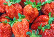 Fresh strawberry Stock Photos