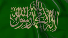 Hamas flag - stock footage