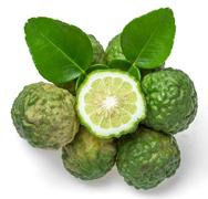 Bergamot fruit Stock Photos