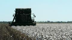 Cotton harvest Stock Footage