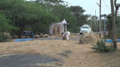 India Chettinad straw on road s Stock Footage