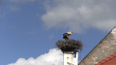 Austria - Burgenland - Rust Stock Footage
