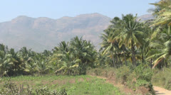India Tamil Nadu palms on road and Western Ghats Stock Footage