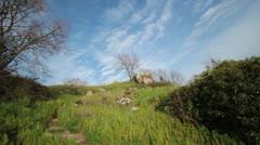 Italian Landscape Stock Footage