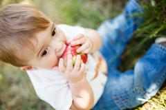 baby boy eating an apple - stock photo