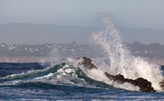 waves crash ashore at pacific grove, california. - stock photo