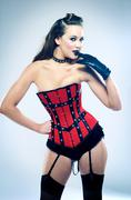 Portrait of sensuous fashion model in corset Stock Photos