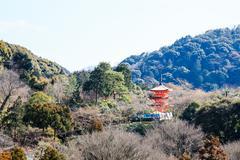 Japanese style pagoda, japan Stock Photos