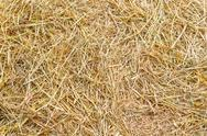 Stock Photo of rice straw background