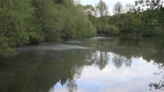 Pond 02 Stock Footage